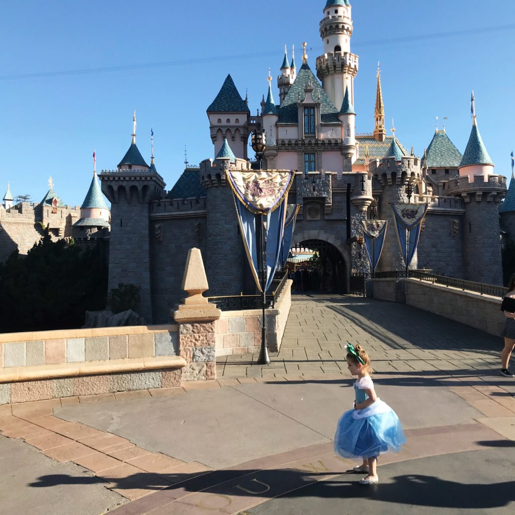 Disneyland Disability Access Pass Experience