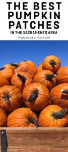 Sacramento, CA Best Pumpkin Patches
