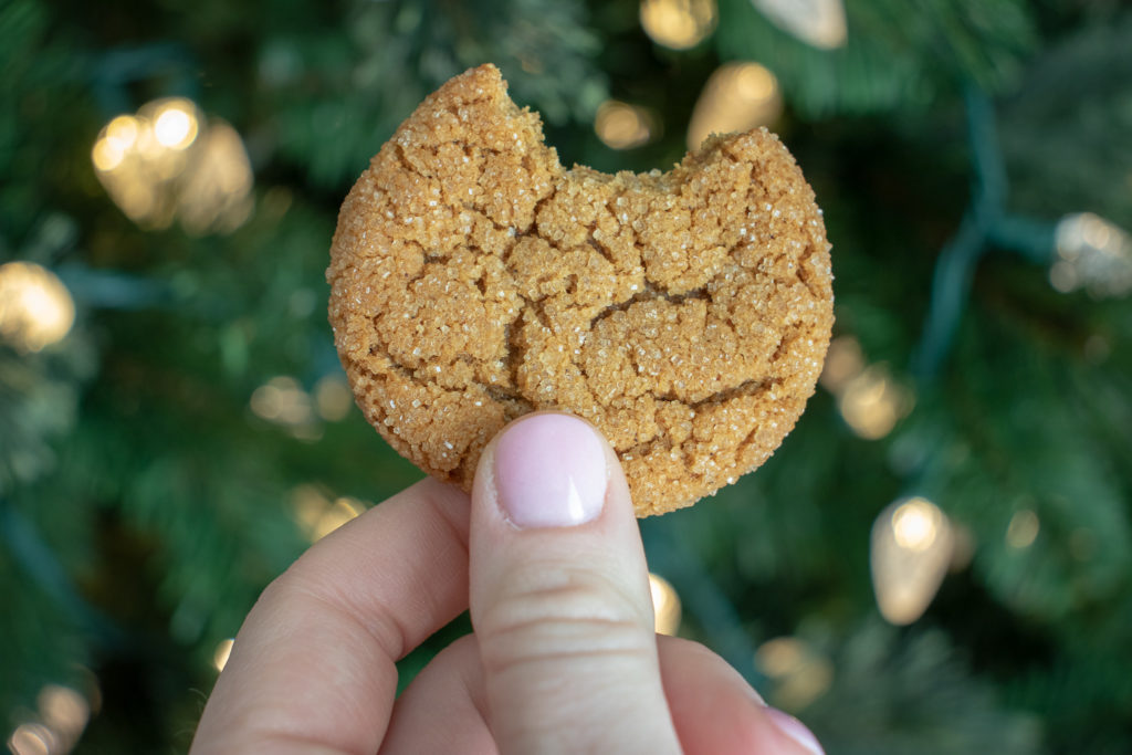 hand holding a molasses cookies with a bite taken out
