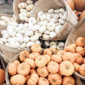 mini white and orange pumpkins