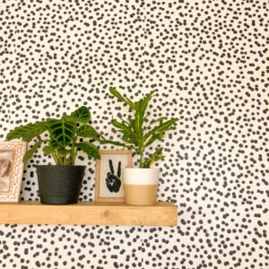 wallpaper and plants